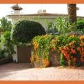 Appartement 2 - Willkommen in Chayofa - Welcome to Chayofa - Teneriffa